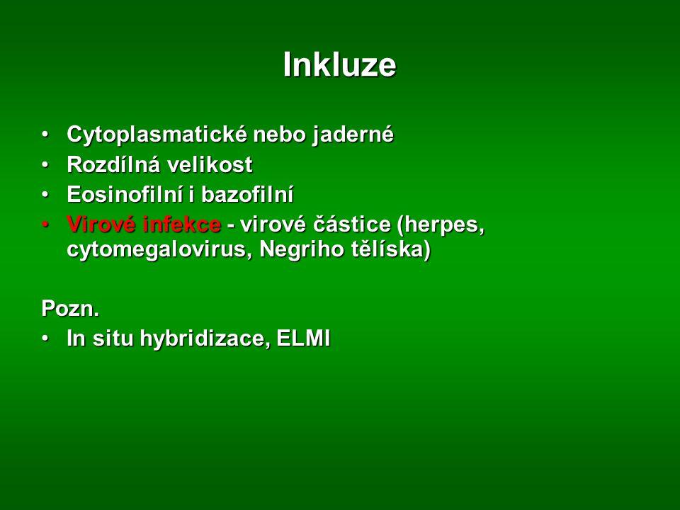Lysozomal storage diseases