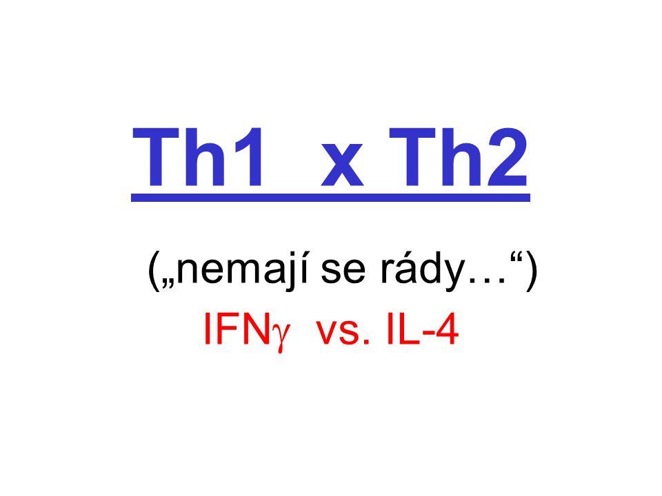 """Th1 x Th2 (""""nemají se rády… ) IFN  vs. IL-4"""