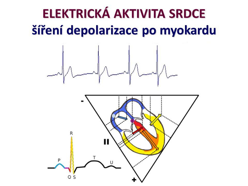 4. SA HRV a Rychlý přechod přes časová pásma
