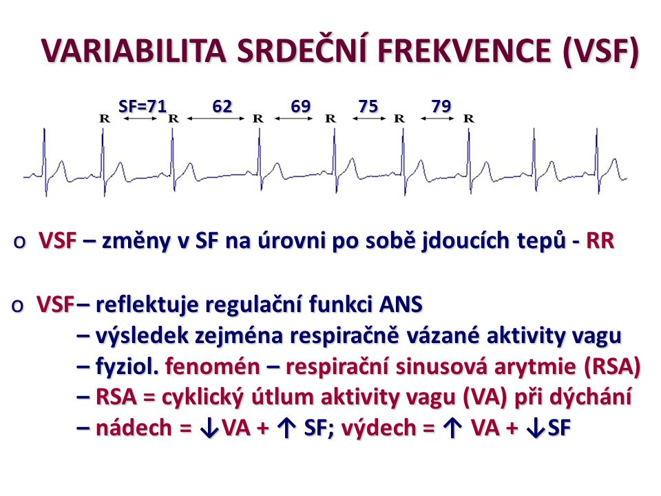 B redukovaná RSA (změny v SF mezi sousedními RR) SF [tep.min -1 ] A markantní RSA (změny v SF mezi sousedními RR) nádechvýdech