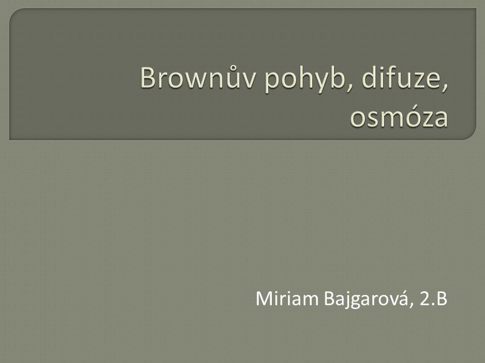 Miriam Bajgarová, 2.B