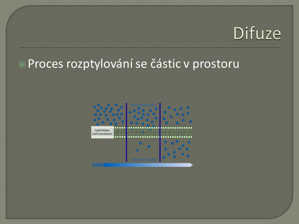  Proces rozptylování se částic v prostoru