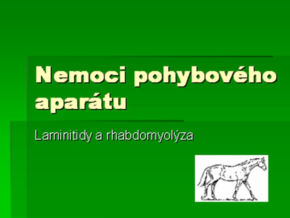 Nemoci pohybového aparátu Laminitidy a rhabdomyolýza