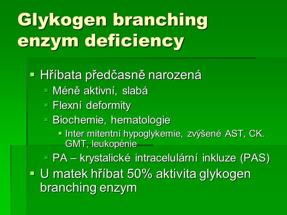 Glykogen branching enzym deficiency  Hříbata předčasně narozená  Méně aktivní, slabá  Flexní deformity  Biochemie, hematologie  Inter mitentní hy