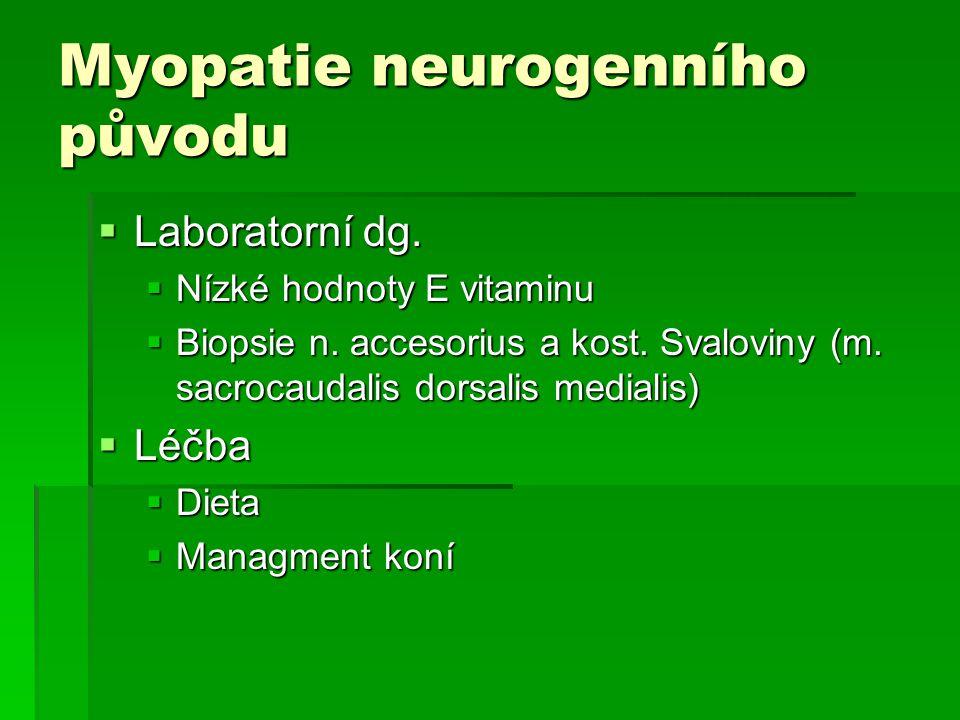 Myopatie neurogenního původu  Laboratorní dg.  Nízké hodnoty E vitaminu  Biopsie n. accesorius a kost. Svaloviny (m. sacrocaudalis dorsalis mediali