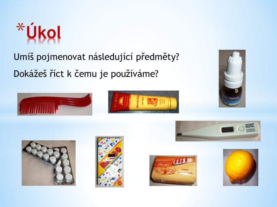Umíš pojmenovat následující předměty Dokážeš říct k čemu je používáme