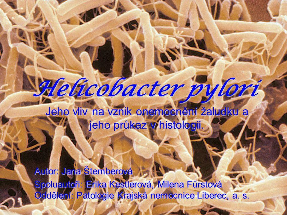 Helicobacter pylori Jeho vliv na vznik onemocnění žaludku a jeho průkaz v histologii. Autor: Jana Štemberová Spoluautoři: Erika Kestlerová, Milena Für