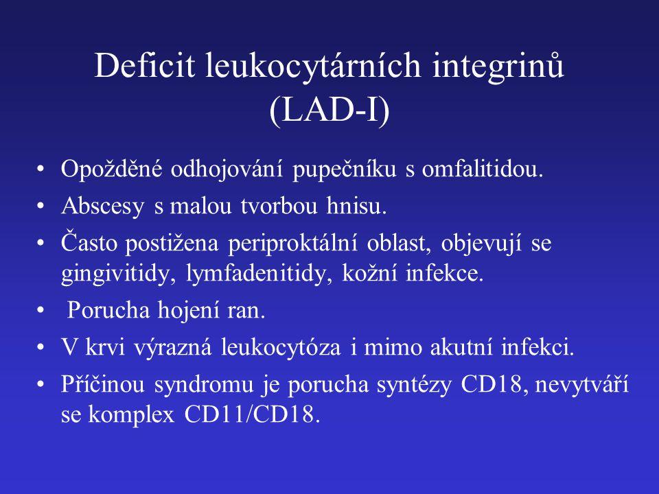 Deficit leukocytárních integrinů (LAD-I) Opožděné odhojování pupečníku s omfalitidou. Abscesy s malou tvorbou hnisu. Často postižena periproktální obl