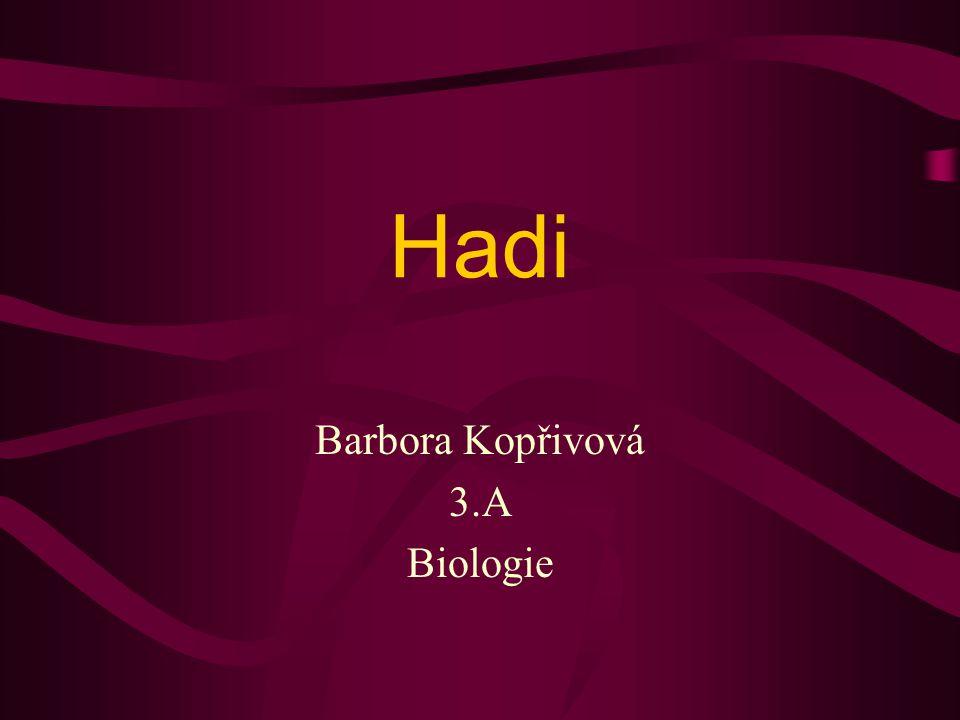Hadi Barbora Kopřivová 3.A Biologie