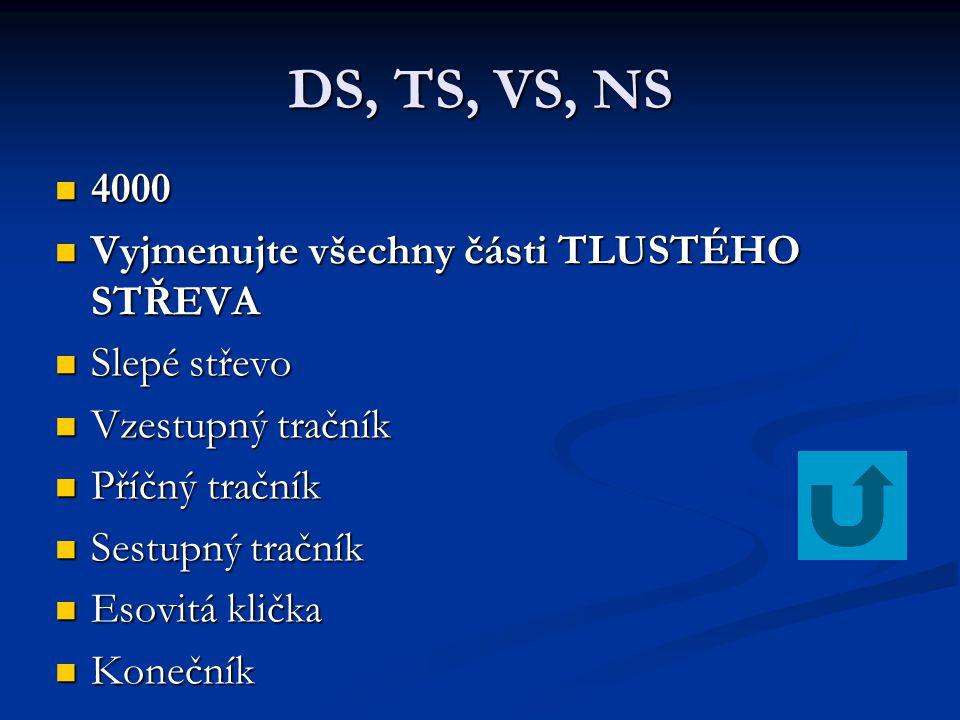 DS, TS, VS, NS 3000 3000 Vyjmenujte 3 slinné žlázy příušní, podčelistní, podjazykové
