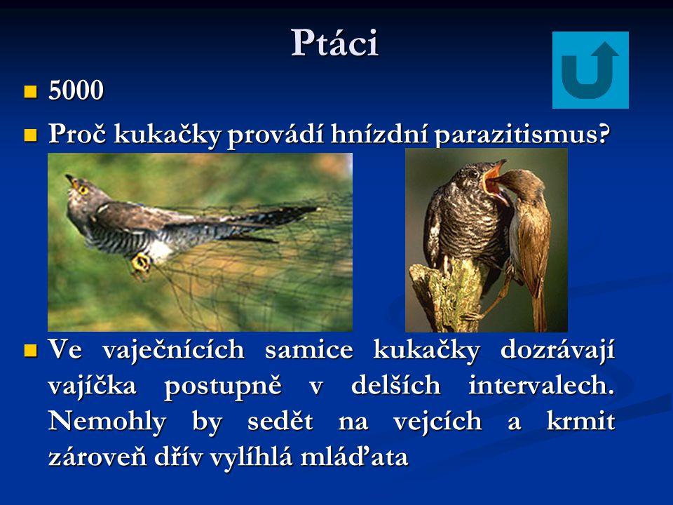 Ptáci 4000 4000 Jakými kostmi je tvořen pletenec ramenní ptáků? Jakými kostmi je tvořen pletenec ramenní ptáků? je tvořen: je tvořen: kostí klíční (sr