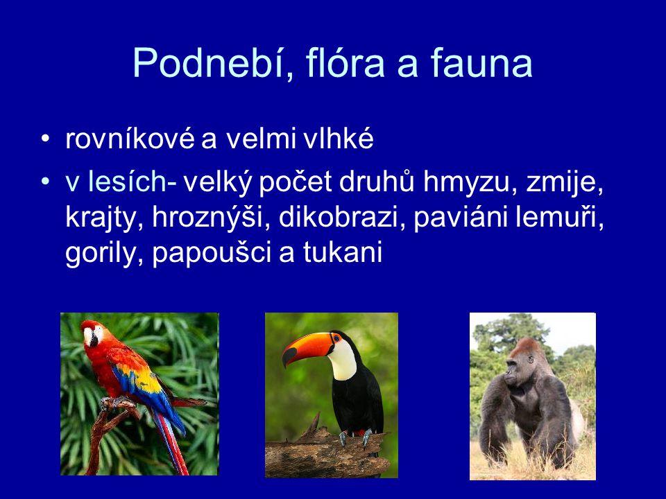 Podnebí, flóra a fauna rovníkové a velmi vlhké v lesích- velký počet druhů hmyzu, zmije, krajty, hroznýši, dikobrazi, paviáni lemuři, gorily, papoušci a tukani