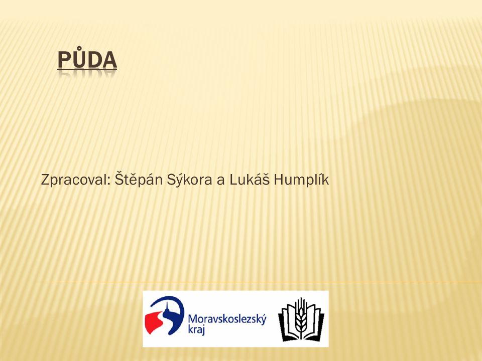 Zpracoval: Štěpán Sýkora a Lukáš Humplík