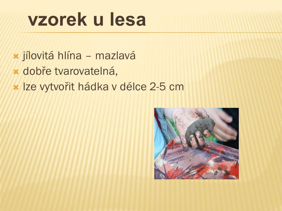  jílovitá hlína – mazlavá  dobře tvarovatelná,  lze vytvořit hádka v délce 2-5 cm vzorek u lesa