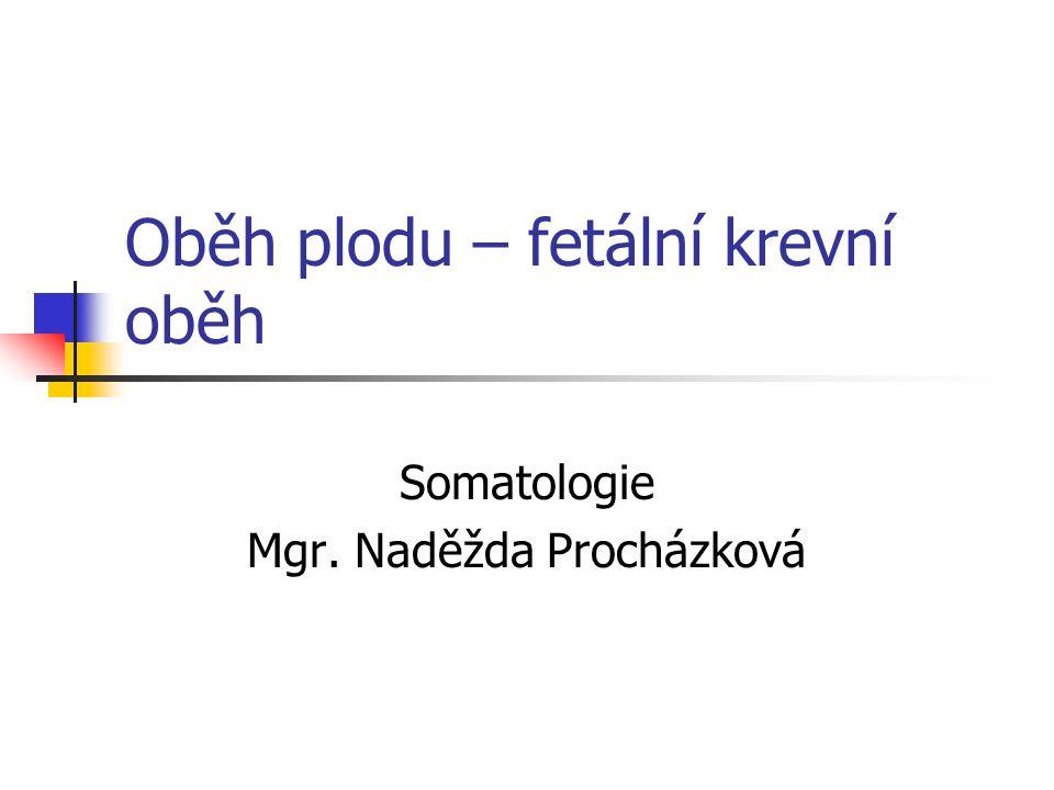 Oběh plodu – fetální krevní oběh Somatologie Mgr. Naděžda Procházková