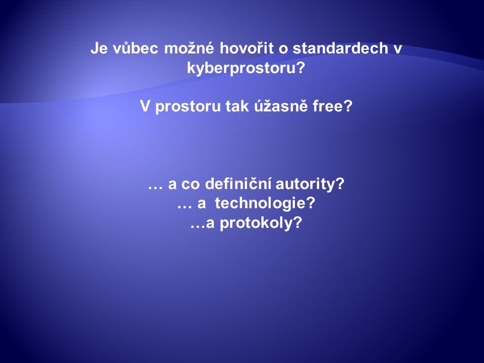 Je vůbec možné hovořit o standardech v kyberprostoru.