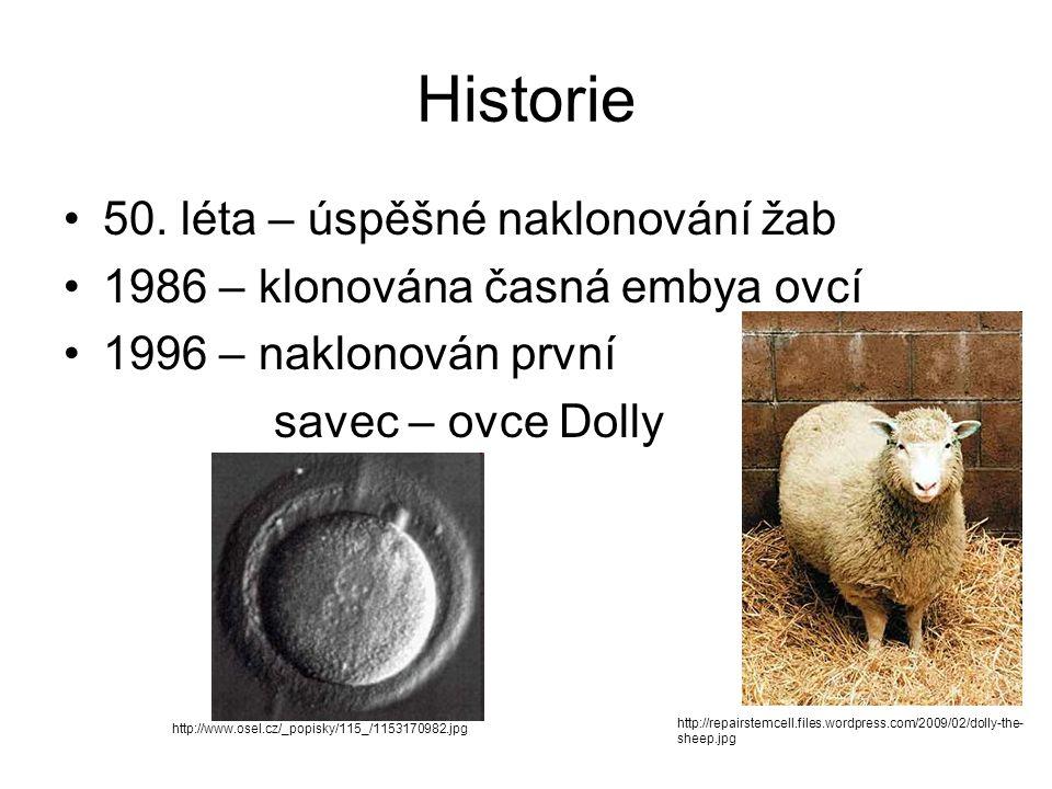 Historie 50. léta – úspěšné naklonování žab 1986 – klonována časná embya ovcí 1996 – naklonován první savec – ovce Dolly http://www.osel.cz/_popisky/1