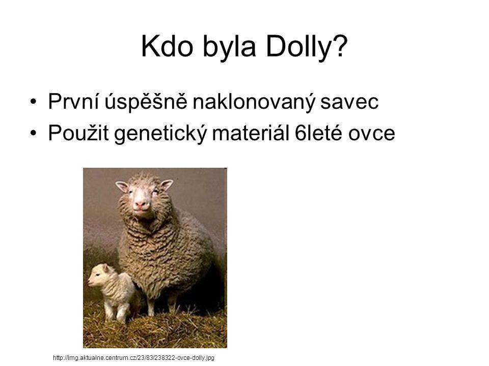 Kdo byla Dolly? První úspěšně naklonovaný savec Použit genetický materiál 6leté ovce http://img.aktualne.centrum.cz/23/83/238322-ovce-dolly.jpg