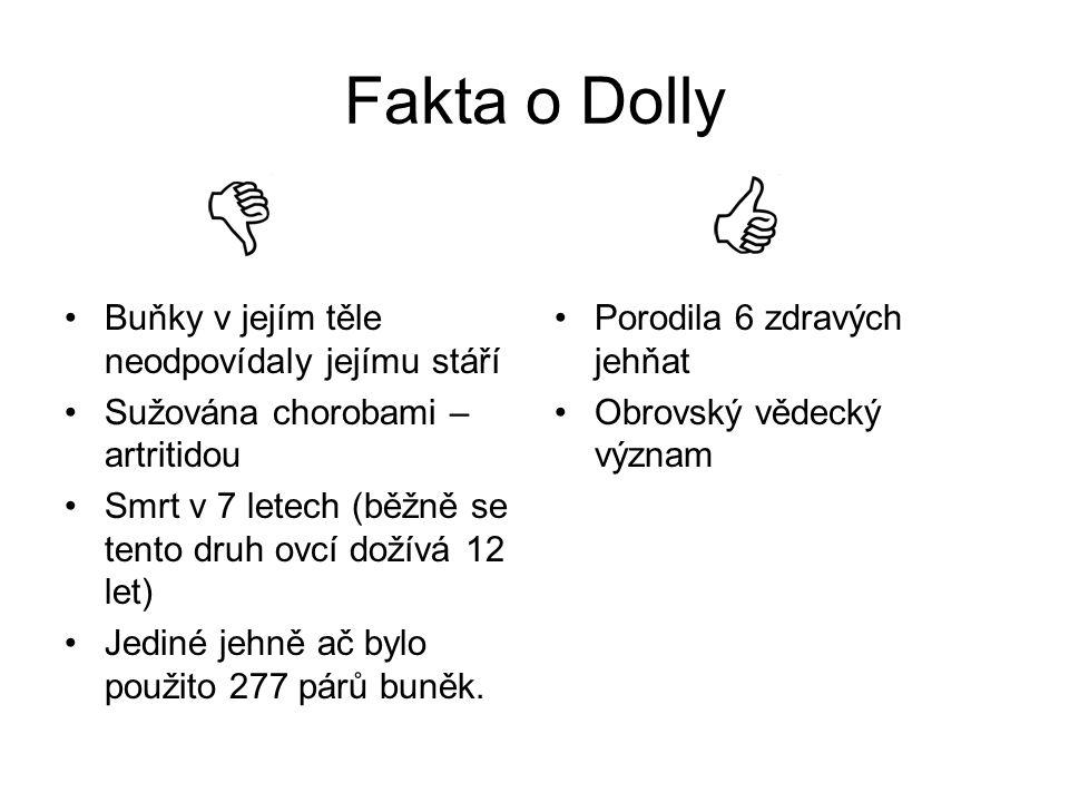 Fakta o Dolly Buňky v jejím těle neodpovídaly jejímu stáří Sužována chorobami – artritidou Smrt v 7 letech (běžně se tento druh ovcí dožívá 12 let) Je