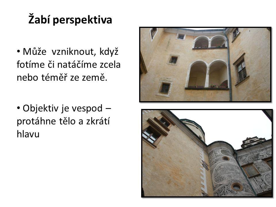 Žabí perspektiva Může vzniknout, když fotíme či natáčíme zcela nebo téměř ze země.