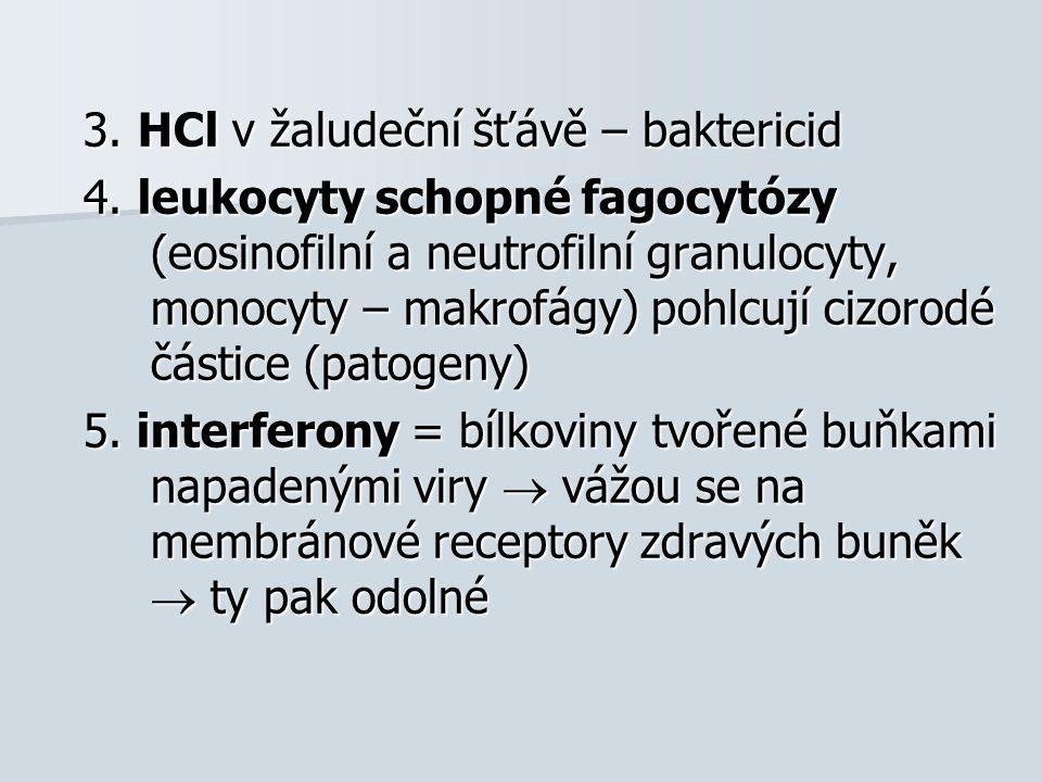 3. HCl v žaludeční šťávě – baktericid 4. leukocyty schopné fagocytózy (eosinofilní a neutrofilní granulocyty, monocyty – makrofágy) pohlcují cizorodé