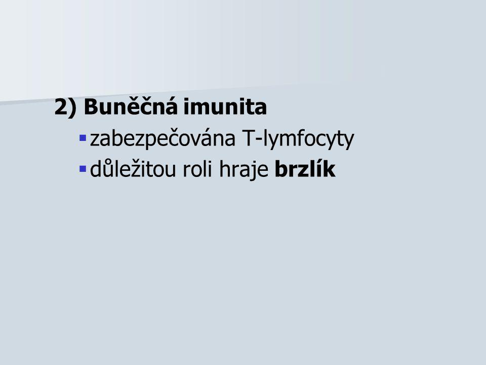 2) Buněčná imunita   zabezpečována T-lymfocyty   důležitou roli hraje brzlík