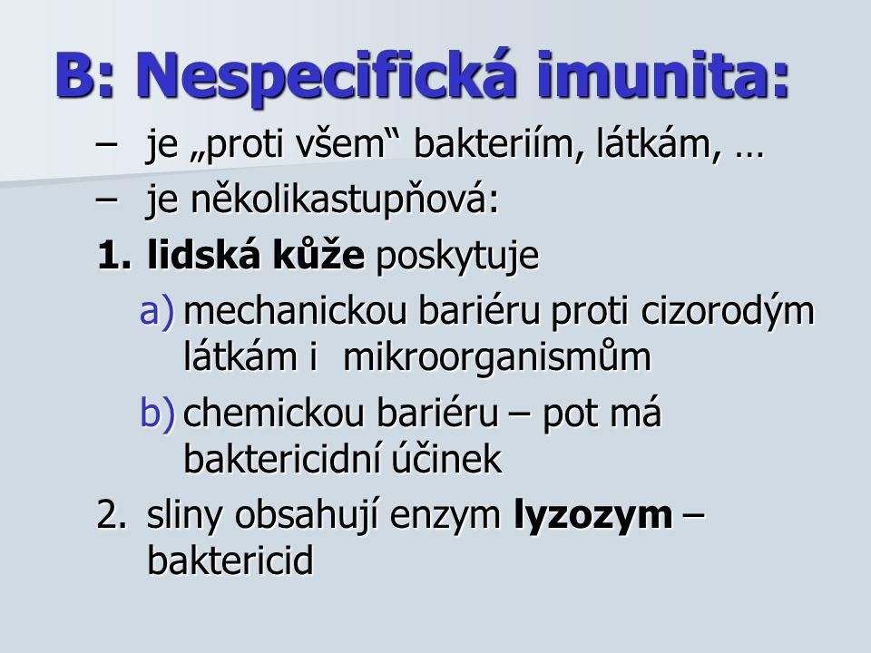 """B: Nespecifická imunita: –je """"proti všem bakteriím, látkám, … –je několikastupňová: 1.lidská kůže poskytuje a)mechanickou bariéru proti cizorodým látkám i mikroorganismům b)chemickou bariéru – pot má baktericidní účinek 2.sliny obsahují enzym lyzozym – baktericid"""