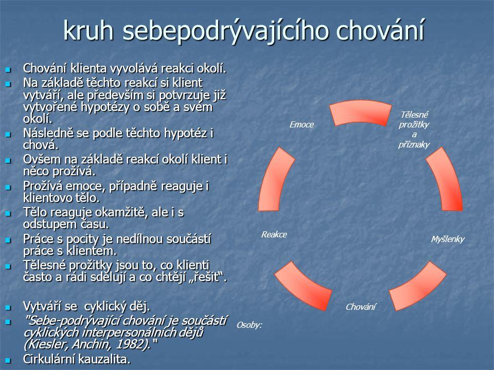 kruh sebepodrývajícího chování Chování klienta vyvolává reakci okolí. Chování klienta vyvolává reakci okolí. Na základě těchto reakcí si klient vytvář