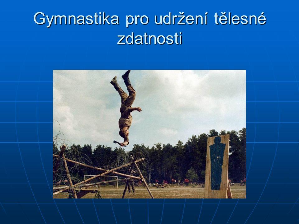 Gymnastika pro udržení tělesné zdatnosti
