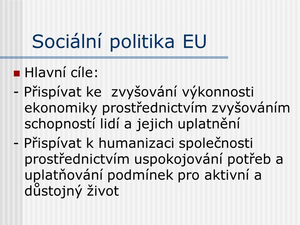 Sociální politika EU Hlavní cíle: - Přispívat ke zvyšování výkonnosti ekonomiky prostřednictvím zvyšováním schopností lidí a jejich uplatnění - Přispí