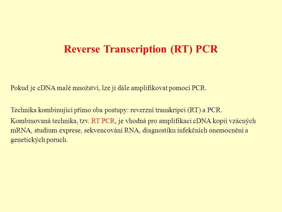 Reverse Transcription (RT) PCR Pokud je cDNA malé množství, lze ji dále amplifikovat pomocí PCR. Technika kombinující přímo oba postupy: reverzní tran