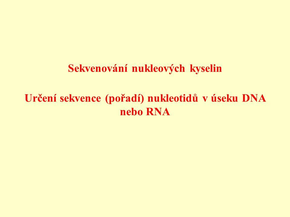 Sekvenování nukleových kyselin Určení sekvence (pořadí) nukleotidů v úseku DNA nebo RNA