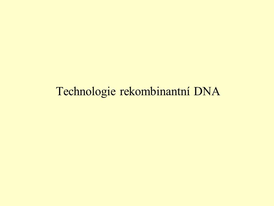 Technologie rekombinantní DNA