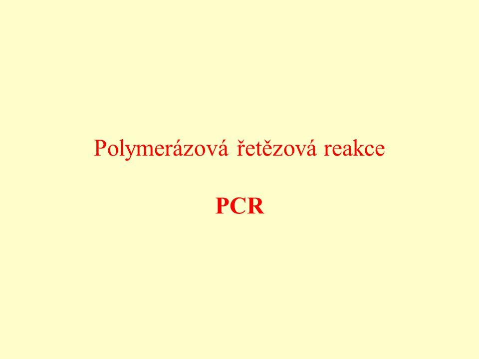 Polymerázová řetězová reakce PCR