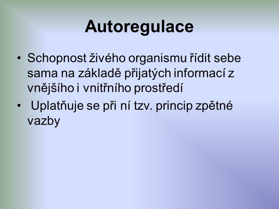 Autoregulace Schopnost živého organismu řídit sebe sama na základě přijatých informací z vnějšího i vnitřního prostředí Uplatňuje se při ní tzv. princ