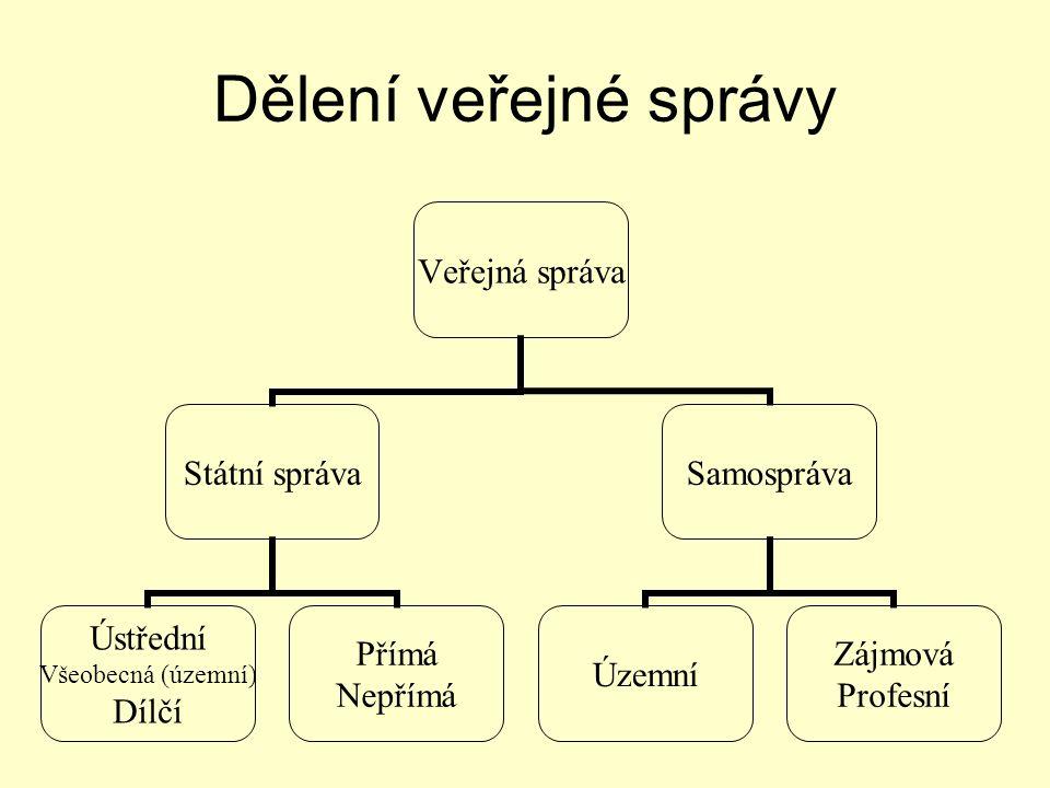 Systémy samosprávy Anglo-americký typ Kontinentální typ –anglo-saské pojetí –germánské pojetí –napoleonské pojetí Smíšený typ