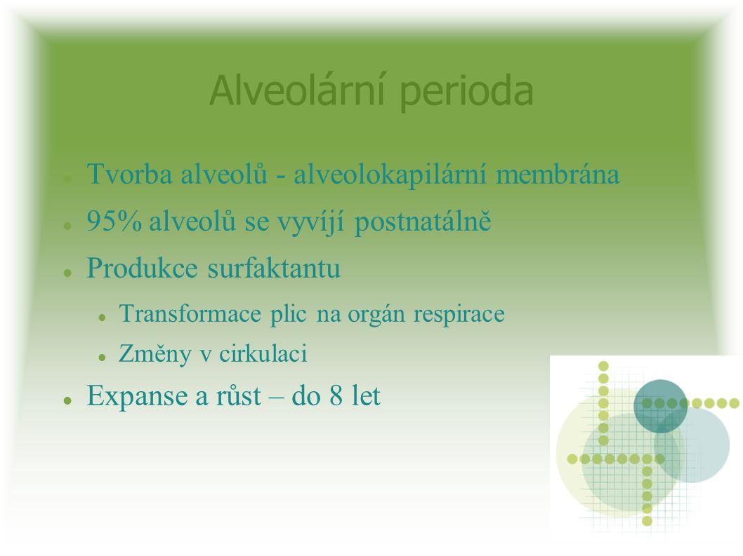 Alveolární perioda Tvorba alveolů - alveolokapilární membrána 95% alveolů se vyvíjí postnatálně Produkce surfaktantu Transformace plic na orgán respir