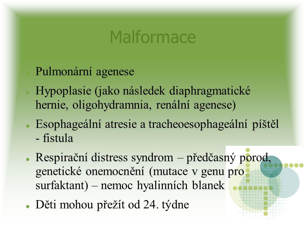 Malformace Pulmonární agenese Hypoplasie (jako následek diaphragmatické hernie, oligohydramnia, renální agenese) Esophageální atresie a tracheoesophag