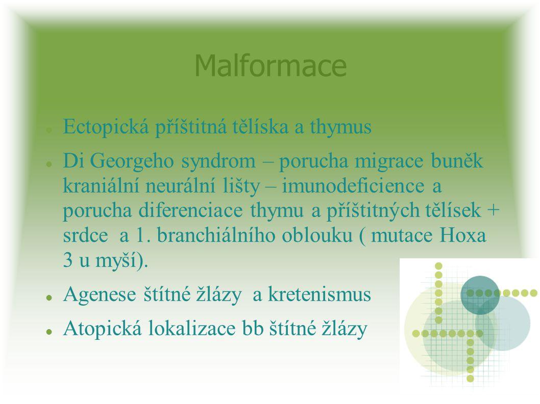 Malformace Ectopická příštitná tělíska a thymus Di Georgeho syndrom – porucha migrace buněk kraniální neurální lišty – imunodeficience a porucha difer