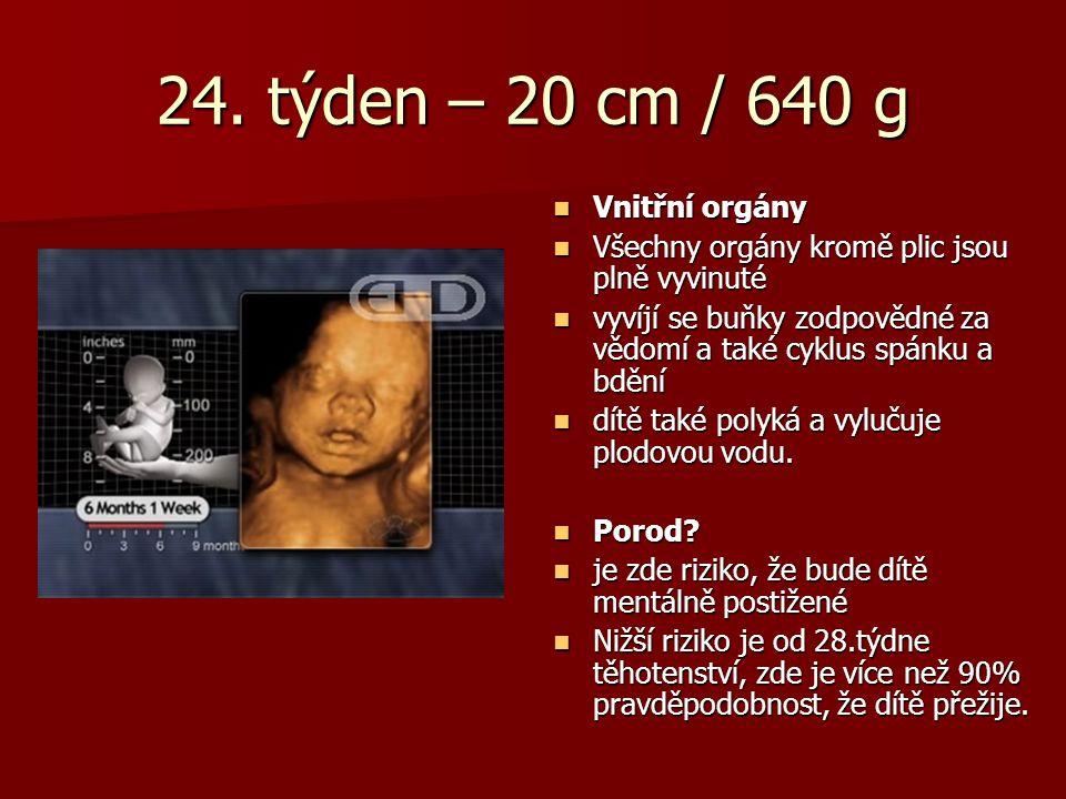 24. týden – 20 cm / 640 g Vnitřní orgány Vnitřní orgány Všechny orgány kromě plic jsou plně vyvinuté Všechny orgány kromě plic jsou plně vyvinuté vyví