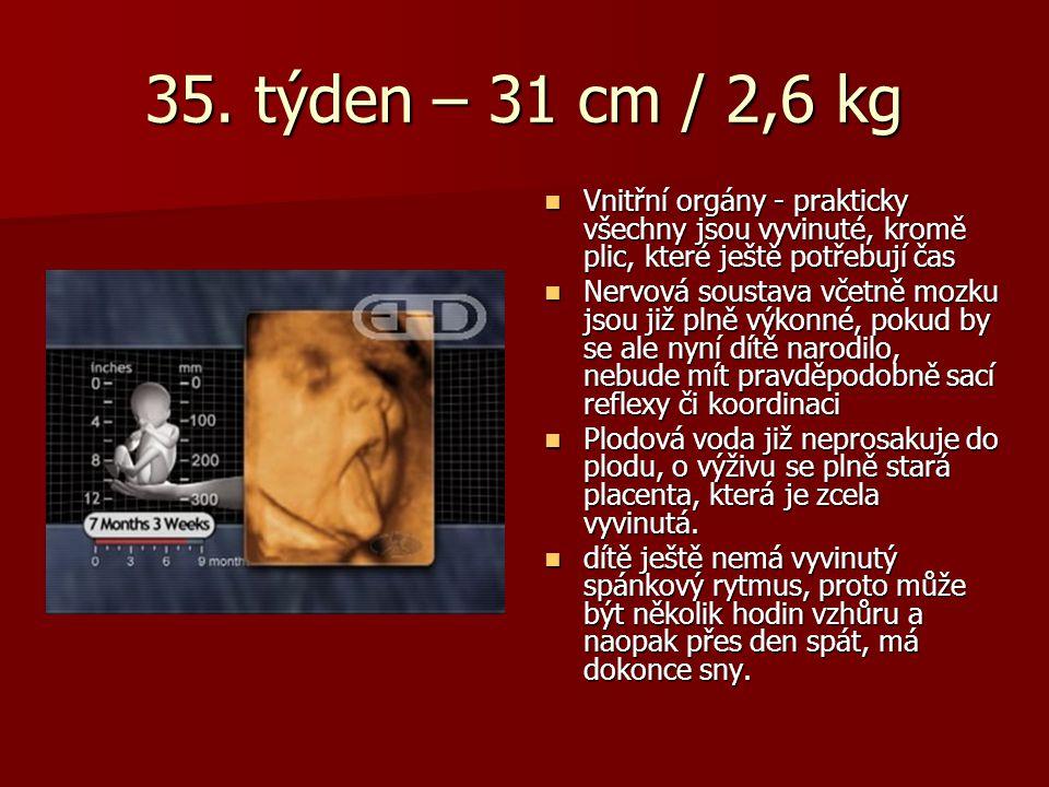 35. týden – 31 cm / 2,6 kg Vnitřní orgány - prakticky všechny jsou vyvinuté, kromě plic, které ještě potřebují čas Vnitřní orgány - prakticky všechny