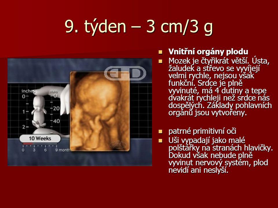9.týden – 3 cm/3 g Vnitřní orgány plodu Vnitřní orgány plodu Mozek je čtyřikrát větší.