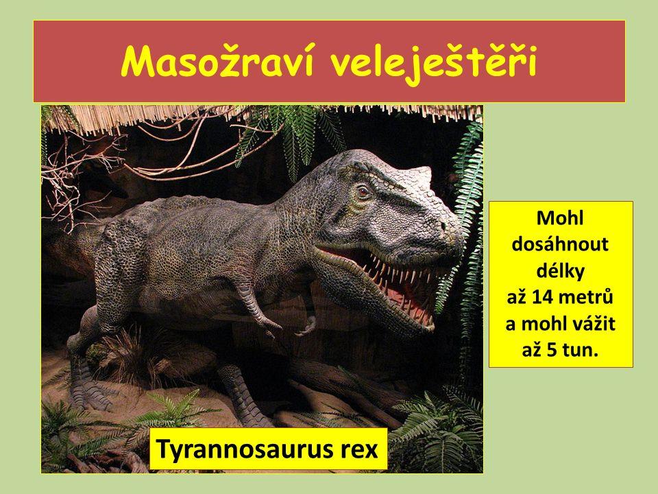 Masožraví veleještěři Mohl dosáhnout délky až 14 metrů a mohl vážit až 5 tun. Tyrannosaurus rex