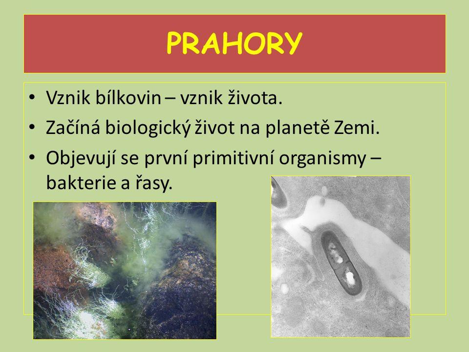 PRAHORY Vznik bílkovin – vznik života.Začíná biologický život na planetě Zemi.
