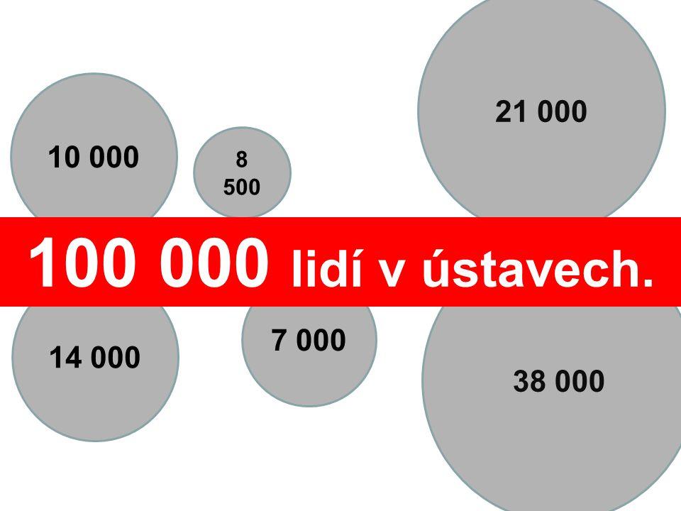 21 000 10 000 7 000 38 000 14 000 8 500 100 000 lidí v ústavech.
