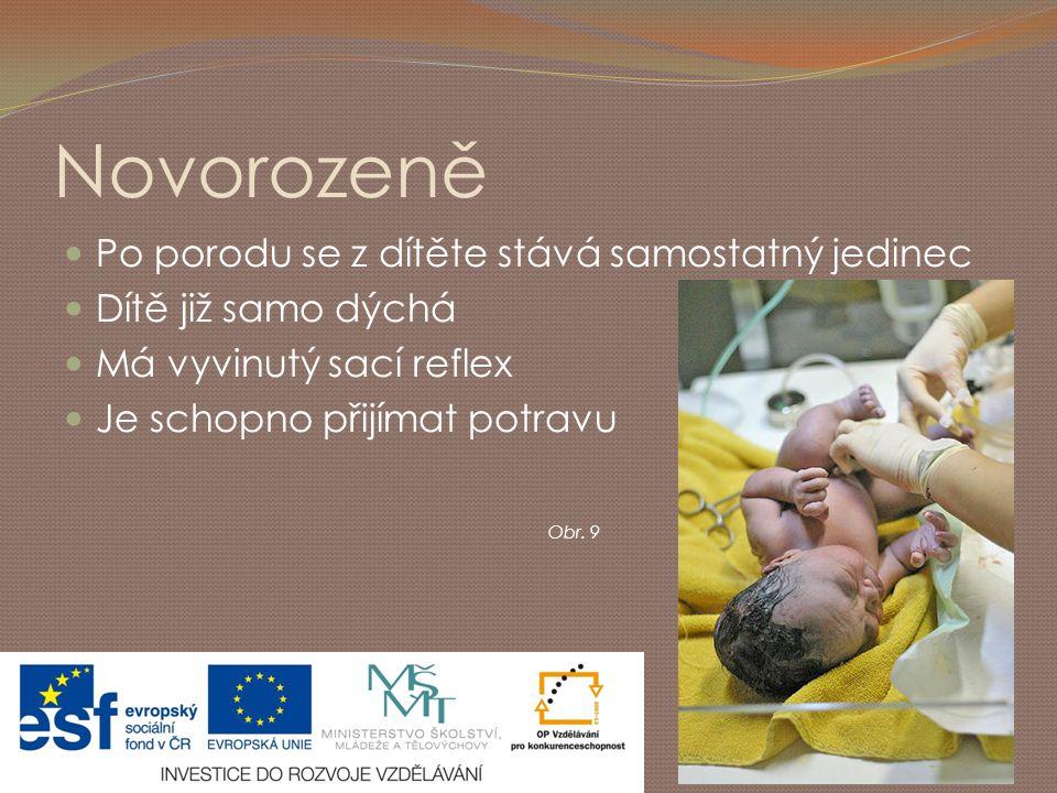 Novorozeně Po porodu se z dítěte stává samostatný jedinec Dítě již samo dýchá Má vyvinutý sací reflex Je schopno přijímat potravu Obr. 9