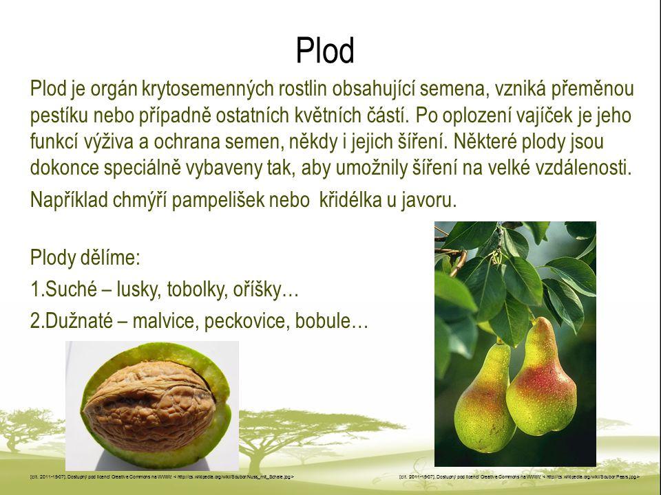 Uveď, na jakých rostlinách rostou uvedené plody a jak plody vypadají.