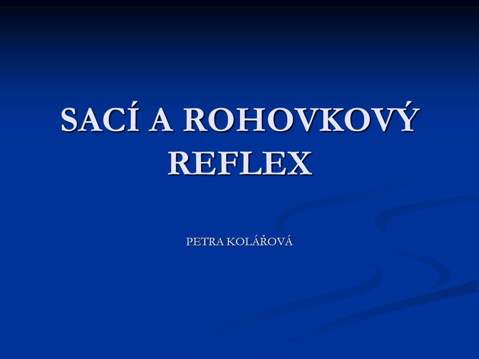 SACÍ A ROHOVKOVÝ REFLEX PETRA KOLÁŘOVÁ
