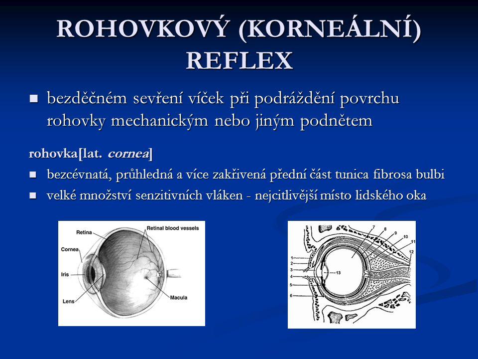ROHOVKOVÝ (KORNEÁLNÍ) REFLEX bezděčném sevření víček při podráždění povrchu rohovky mechanickým nebo jiným podnětem bezděčném sevření víček při podráž
