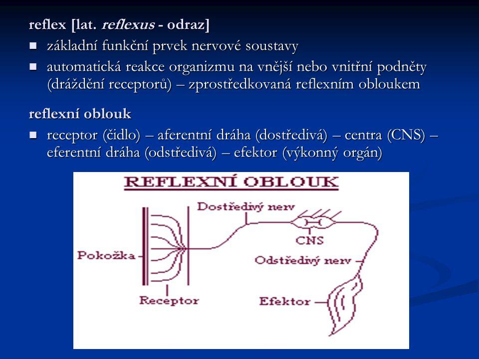 monosynaptický reflex nejjednodušší nejjednodušší dva neurony - aferentní (senzorický) neuron vede vzruch přes jedinou synapsi na eferentní (motorický) neuron dva neurony - aferentní (senzorický) neuron vede vzruch přes jedinou synapsi na eferentní (motorický) neuron konstantní hodnota prahu dráždivosti konstantní hodnota prahu dráždivosti polysynaptický reflex do reflexního oblouku je zapojen alespoň ještě jeden další neuron – interneuron do reflexního oblouku je zapojen alespoň ještě jeden další neuron – interneuron prahová hodnota vzruchu není konstantní prahová hodnota vzruchu není konstantní